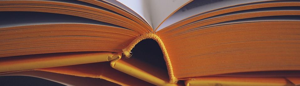 an open book with visible binding seam