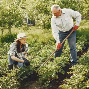 FCE Part 2 - An old man with a younger women tilling soil, tending to their crops